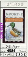 Buzin - Belgien - Belgique -  Belgium - Belgie - Michel 4584 -  Oo Oblit. Used Gebruikt - 1985-.. Vögel (Buzin)