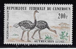 Cameroun Poste Aérienne N°55 - Oiseaux - Neuf ** Sans Charnière -  TB - Cameroun (1960-...)