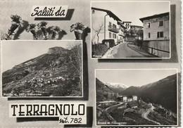 SALUTI DA TERRAGNOLO VEDUTINE DI PIAZZA E DOSSO ANNO 1964 VIAGGIATA - Trento
