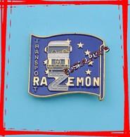 Pin's Transports RAZEMON, HERM, Département Des LANDES, Camion RENAULT - Transportation