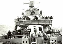 THE WAR AT SEA  CONWAY WORLD WAR II CATALOGUE ROYAL NAVY  WW2 WWII WORLD WAR 2 WELTKRIEG - Bateaux
