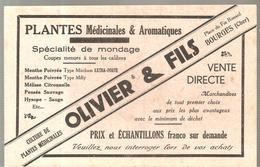 Buvard OLIVIER & Fils Place Du Fin Renard à BOURGES (Cher) Plantes Médicinales & Aromatiques - Chemist's