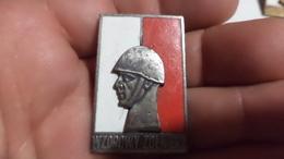 Poland  Badge Silver - Army