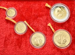 China - Volksrepublik - Anlagegold: China Gold Panda Proof Set 1993: Lot 5 Münzen Bestehend Aus 50 Y - Chine