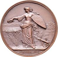 Medaillen Deutschland: Deutsche Landwirtschafts-Gesellschaft: Lot 3 Bronzene Verdienstmedaillen Von - Allemagne
