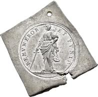 Medaillen Deutschland: Hamburg: Klippenförmige Zinnmedaille O.J.(1906), Auf Den Brand Der St.Michael - Allemagne