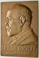 Medaillen Deutschland: Karlsruhe: Bronzeplakette 1907, Von Rudolph Mayer, Pforzheim, Auf Das 50-jähr - Allemagne