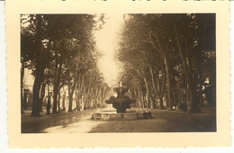 FRANCE  - Aix -en-Provence --  Fontaine Thermale Du Cours Mirabeau  ( Format: 11.5 X7.5 ) - Lieux