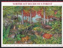 USA 2005 Mi Nr 3907 - 3916; Nr 7, Northeast Deciduous Forest: Hawk, Hemlock, Turkey, Bear, Bird, Flower - Verenigde Staten