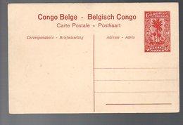 CONGO - ENTIER STIBBE 43 - VUE 11 - NEUF  TB - PL8 - Entiers Postaux