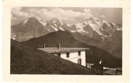 SUISSE  ( Berne )  Hôtel Schynige- Platte ( Format: 11.5 X7.5 ) - Lieux