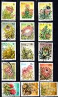 AFRICA SOUTH AFRICA / RSA SUGARBUSH (PROTEA REPENS) AÑO 1977 - África Del Sur (1961-...)