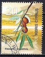 Cyprus 2006 - Fruits Of Cyprus - Chypre (République)