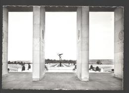 Henri-Chapelle / Hendrik-Kapelle - Cimetière Américain D'Henri-Chapelle - Carte Photo éd. Impr. Willems Jos - Welkenraedt