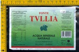 Etichetta Acqua Minerale Fonte Tullia Sellano Perugia - Etichette