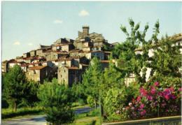 ARCIDOSSO  GROSSETO  Monte Amiata  Panorama - Grosseto