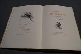 RARE,1887,Giacomelli,Nos Oiseaux,André Theuriet,compositions Giacomelli,200 Pages,28,5 Cm./19,5 Cm. - Books, Magazines, Comics