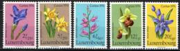 LUSSEMBURGO - 1976 - SERIE FIORI PROTETTI - FLOWERS - CARITAS - MNH - Denmark
