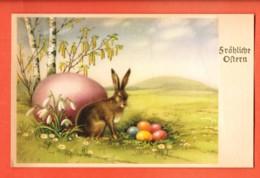 VAP-35 Fröhliche Ostern Joyeuses Pâques, Lapin Et Oeufs. Circulé 1951 - Pâques