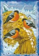 Bird - Oiseau - Vogel - Uccello - Pássaro - Bullfinches On Oatmeal - Elina Kautto - Noël