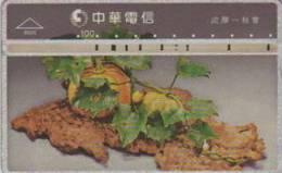 = TAIWAN -  9020  =  MY COLLECTION - Taiwan (Formosa)