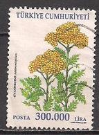 Türkei  (2001)  Mi.Nr.  3273  Gest. / Used  (2ae17) - 1921-... République