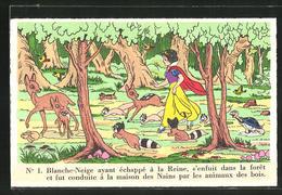 AK Schneewittchen Flieht Vor Der Bösen Stiefmutter In Den Wald, Comic Walt Disney - Comics