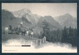 22316 CH - Fenaison à La Montagne Grandvillard - FR Fribourg