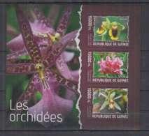 B92. Guinee - MNH - 2014 - Nature - Flora - Flowers - Orchids - Non Classés
