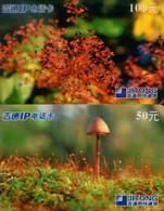 China Jitong Prepaid Cards, Mushroom, Guangdong Province, (2pcs) - China
