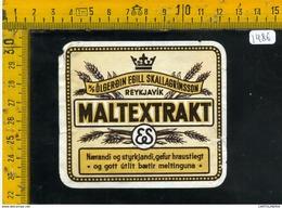 Etichetta Birra Olgerdin Egill - Birra