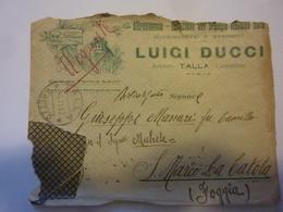 """Busta Viaggiata Pubblicitaria """"ALLEVAMENTO DEL SEGUGIO ITALIANO LUIGI DUCCI Arezzo"""" 1918 - 1900-44 Vittorio Emanuele III"""