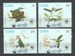 Cuba 1992 Mi 3589-3592 WWF BIRDS - W.W.F.