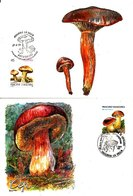 10 Cartes Maximum FDC - Mushrooms