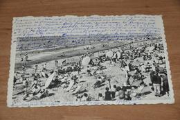 7388-  ZOALS HAGEDISSEN IN DE ZON - Nieuwpoort