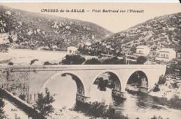 CPA  34 CAUSSE DE LA SELLE PONT BERTRAND SUR L'HERAULT - Unclassified