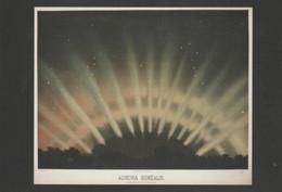 Postcard - The Night Sky - Aurora Borealis - Unused New - Postcards