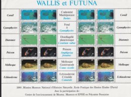 WALLIS ET FUTUNA - Feuillet De Vie Maritime - Marine Life