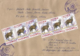 Ethiopia 2017 Tercha University Postal Agency Bushbuck Cover - Ethiopië