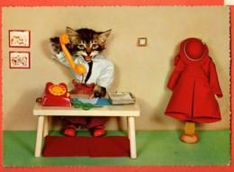 VAP-38 La Téléphoniste, Chat Humanisé, Katze. Non Circulé  Grand Format - Dressed Animals