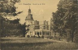 Kapellen - Capellen  : Kasteel Op De Wal  ( HOELEN 9614 ) - Kapellen