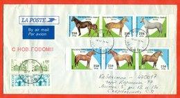 Russia 1995.Horses. Provisoria Of The Republic Of Tuva.  The Envelope Passed Mail. - Horses