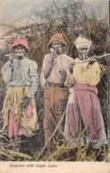 Jamaïque - Ethnic / 13 - Negroes With Sugar Cane - Jamaica
