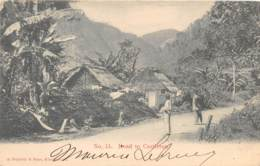 Jamaïque - Topo / 44 - Road To Castleton - Jamaica
