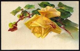 CATHERINA KLEIN - FLEUR - édit. P.F. Nr 2104 Ce 11 - Voir Scans - Carte Brillant - Klein, Catharina