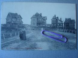 DUINBERGEN : Cottages Dans Les Dunes En 1907 - België