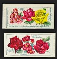 DDR 1972 Michel Nr. MH 6 I 1 ** Postfrisch, Markenheftchen Rosenausstellung, Michel Nr.n 1778 Und 1779 - DDR