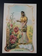 CHROMO. Lith. Romanet. FLEURS Symbole Des  Pays .Femme En  Habit  Folklorique.  OPONCE. MEXIQUE - Old Paper