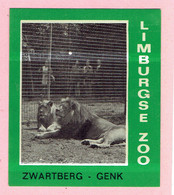 Sticker - Limburgse Zoo - Zwartberg Genk - Leeuwen - Autocollants