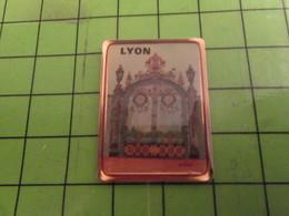 513H Pin's Pins / Beau Et Rare / THEME VILLES : LYON PORTE GRILLE EN FER FORGé OUVRAGé - Cities